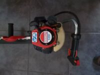 A Lawnflite E2591 professional petrol Hedge Trimmer