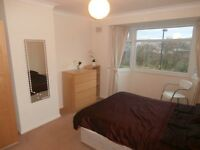 Lovely Double Room in Friendly Professional Houseshare, Leafy Cul-de-Sac Location