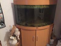 200 litre fish tank