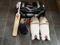 Youth cricket set, bag, helmet, pads, gloves and bat