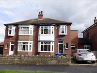 4 Bed Semi House in High Storr S11, Spacious, Well Presented, Fantastic View and Much More