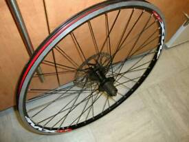 BRAND NEW 26 inch (Mach1) mountain bike rear disc Wheel