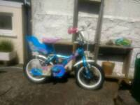 Little girls bike with dolly seat