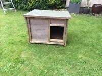 Cat dog chicken rabbit house