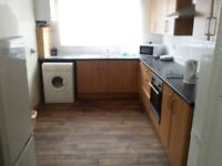 A lovely 4 bedroom property shared all welcome now