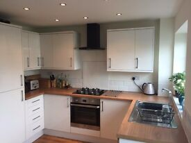 Lovely refurbished house, large room available with flatmate who is only in 1-2 days a week