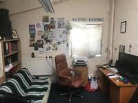 Summer Sublet in Spacious Converted Warehouse (all bills inc)