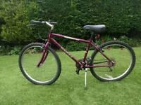 Dawes Tracker mountain bike