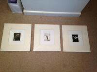 White wooden picture frames x 3