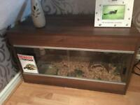 Dark wood reptile vivarium