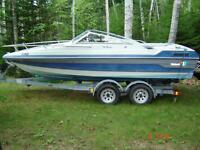 1989 wellcraft boat and trailer