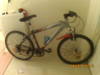 carrrera mountain bike