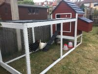 Traditional Wooden Chicken Coop and Run