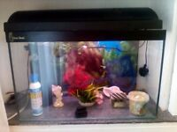 Aquarium With Accessories For Sale