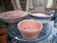 3 Attractive Low-Level Plant Pots.