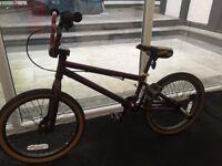 Raleigh Voodoo Shang Limited Edition kids bike