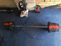 Barbell with Vinyl Weights