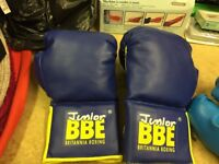 Two pairs of boxing gloves for sale