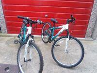 """2 x Apollo girls mountain bikes 14"""" & 17"""" frames (collection abergele)"""