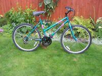 Green ladies mountain bike
