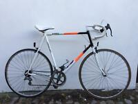 Raleigh Pro Race Road Bike 12 Speed Reynolds 501