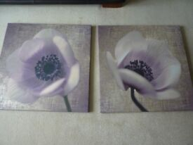 Pair of Large Canvas Prints