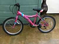 Girls bike 14inch frame