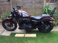 Fully loaded H-D Sportster XL883N with extras and in excellent condition, only 502 miles.