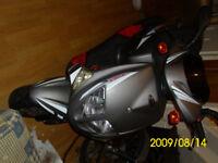2009 PGO T-Rex Moped 125CC