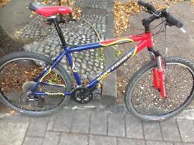 Gary fisher mountain bike