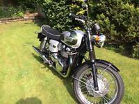 Triumph Bonneville T100, 110 Anniversary
