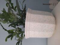 Large white plant pot with blue specks.