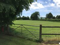 Paddocks to rent in Evercreech, Shepton Mallet, from 1.25 to 5 acres. Long term let preferred.
