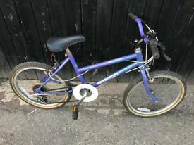 "Raleigh Calypso Girls 20"" wheel Bike. Serviced, Good Condition. Free Lock, Lights, Delivery"