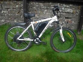 Electric off road mountain bike