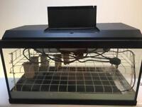 Home made propagator/terrarium