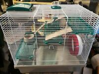 Full Syrian Hamster set up - Pico XL cage and accessories
