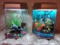 2 20litre fish aquariums