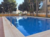 Beachside Apartment in Punta Prima, 40 mins from Alicante £273 per week, great location: