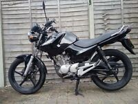 Yamaha YBR 125 Great, economical learner or commuter bike