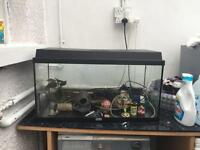 Large fish tank aquarium all accessories filter lighting ornaments etc