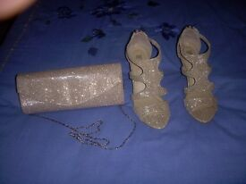 Gold Evening Shoes & Matching Bag