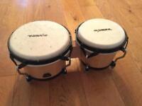 AA/Meinl hand drums