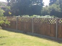 The Fencing Company, Fencing, Landscaping and Tree Surgery Services