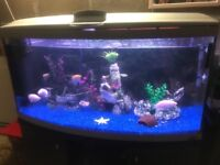 300l bow front fish tank 4 ft full set up with stand heater filter 2 x t8 light 3D bg gravel more