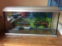100 litre fish tank (length 80cm, height 40cm, width 30cm) including filter