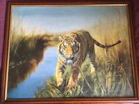 Large Framed Print of Tiger.