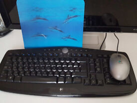 HP 22 inch monitor + logitech keyboard and mouse + mousemat