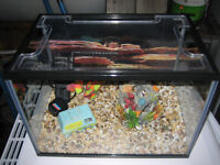 FISH TANK WITH ACCESSORIES MINT CONDITION OR SWAP