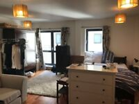 Huge Shoreditch Room available for immediate 2.5m sublet